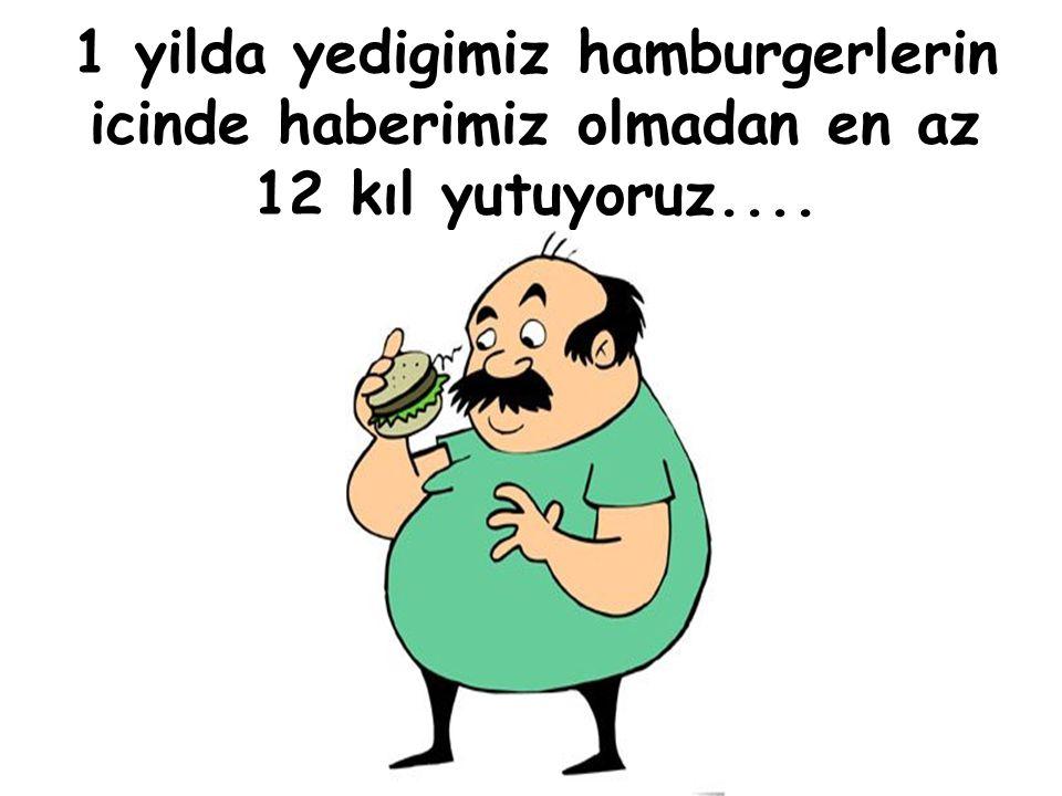 1 yilda yedigimiz hamburgerlerin icinde haberimiz olmadan en az 12 kıl yutuyoruz....
