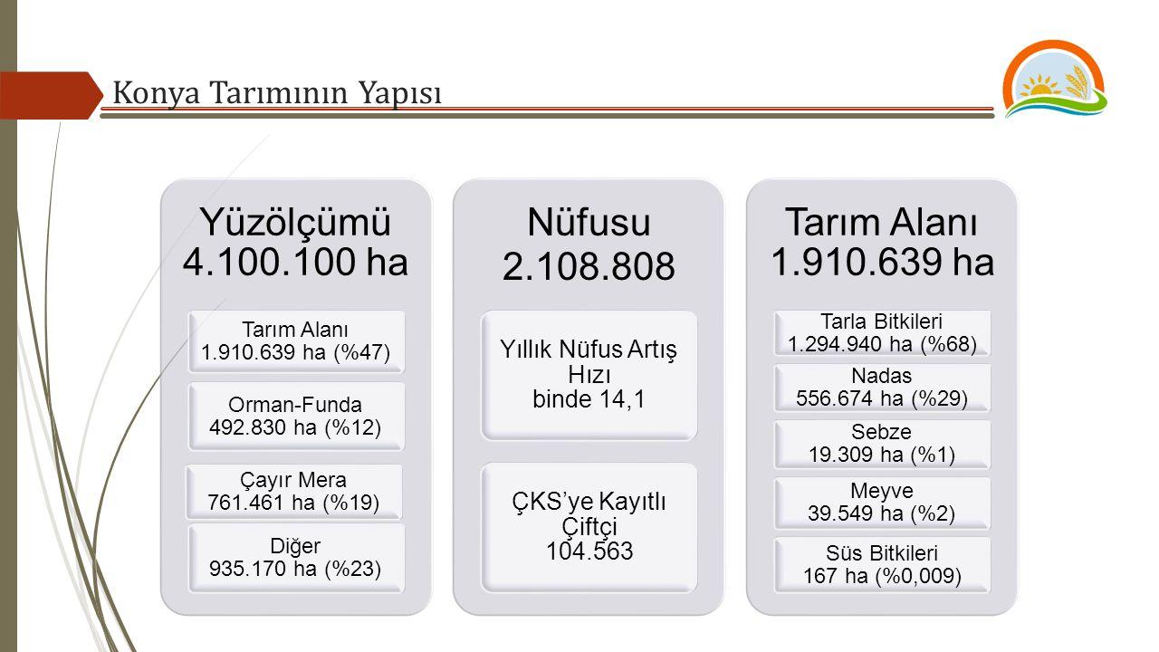 Konya Tarımının Yapısı Yüzölçümü 4.100.100 ha Tarım Alanı 1.910.639 ha (%47) Orman-Funda 492.830 ha (%12) Çayır Mera 761.461 ha (%19) Diğer 935.170 ha (%23) Nüfusu 2.108.808 Yıllık Nüfus Artış Hızı binde 14,1 ÇKS'ye Kayıtlı Çiftçi 104.563 Tarım Alanı 1.910.639 ha Tarla Bitkileri 1.294.940 ha (%68) Nadas 556.674 ha (%29) Sebze 19.309 ha (%1) Meyve 39.549 ha (%2) Süs Bitkileri 167 ha (%0,009)