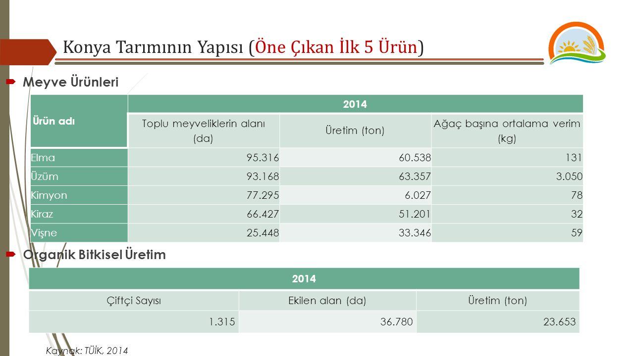  Meyve Ürünleri Ürün adı 2014 Toplu meyveliklerin alanı (da) Üretim (ton) Ağaç başına ortalama verim (kg) Elma95.31660.538131 Üzüm93.16863.3573.050 Kimyon77.2956.02778 Kiraz66.42751.20132 Vişne25.44833.34659 Kaynak: TÜİK, 2014  Organik Bitkisel Üretim 2014 Çiftçi SayısıEkilen alan (da)Üretim (ton) 1.31536.78023.653 Konya Tarımının Yapısı (Öne Çıkan İlk 5 Ürün)