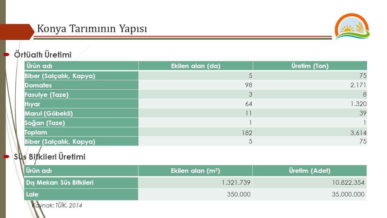 Kaynak: TÜİK, 2014  Örtüaltı Üretimi  Süs Bitkileri Üretimi Konya Tarımının Yapısı Ürün adıEkilen alan (m 2 )Üretim (Adet) Dış Mekan Süs Bitkileri 1.321.73910.822.354 Lale 350.00035.000.000 Ürün adıEkilen alan (da)Üretim (Ton) Biber (Salçalık, Kapya) 575 Domates 982.171 Fasulye (Taze) 38 Hıyar 641.320 Marul (Göbekli) 1139 Soğan (Taze) 11 Toplam 1823.614 Biber (Salçalık, Kapya) 575
