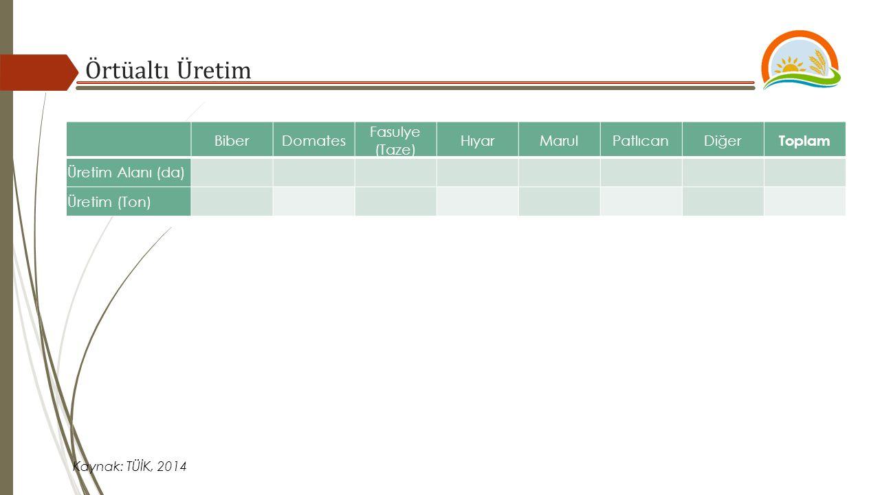 BiberDomates Fasulye (Taze) HıyarMarulPatlıcanDiğer Toplam Üretim Alanı (da) Üretim (Ton) Örtüaltı Üretim Kaynak: TÜİK, 2014
