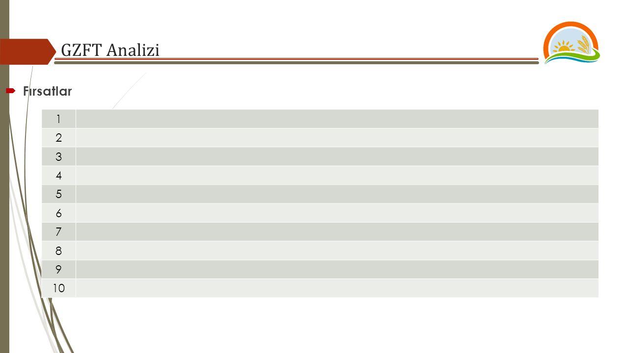 GZFT Analizi  Fırsatlar 1 2 3 4 5 6 7 8 9 10