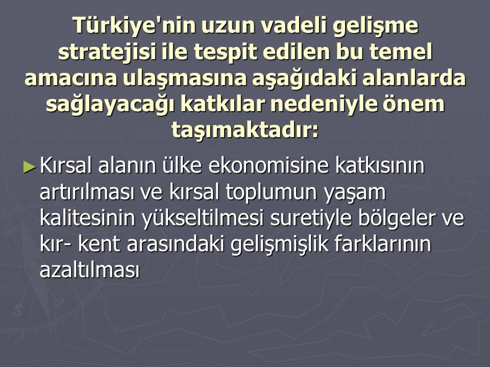 Türkiye'nin uzun vadeli gelişme stratejisi ile tespit edilen bu temel amacına ulaşmasına aşağıdaki alanlarda sağlayacağı katkılar nedeniyle önem taşım