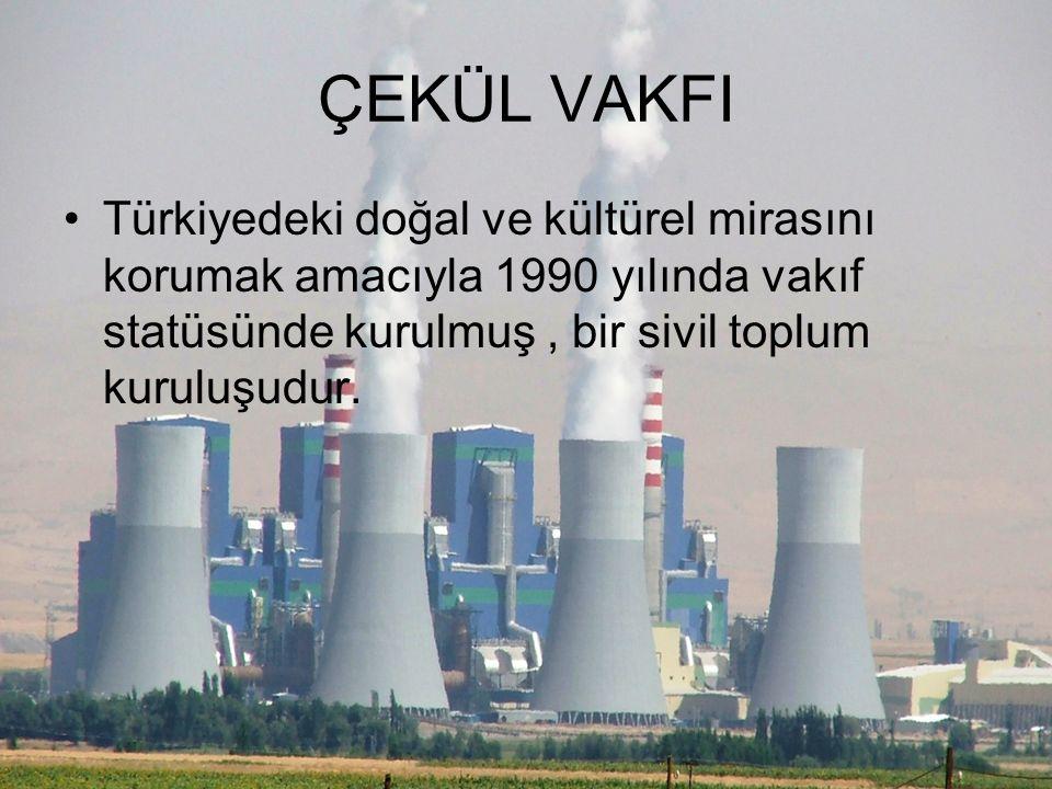TEMA Vakfı Türkiye'nin çölleşmeyle ve erozyonla mücadelesini birinci amaç edinmiş çevreci kuruluş.11 Eylül 1992 tarihinde,kurulmuş olan çevreci vakıft
