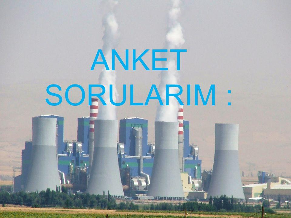 TÜRKÇEK 1972 yılında Türkiye'nin ilk gönüllü çevre kuruluşu olarak İstanbul'da kurulan ve giderek yoğunlaşan çevre sorunları karşısında faaliyetlerde
