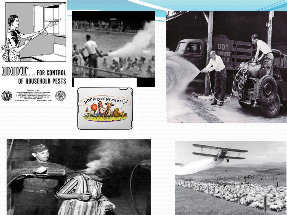Pestisitlerin kimyasal yapılarına göre sınıflandırılması Sentetik organik pestisitler Klorlanmış Hidrokarbonlar DDT, (dikloro difenil trikloroethan) ç