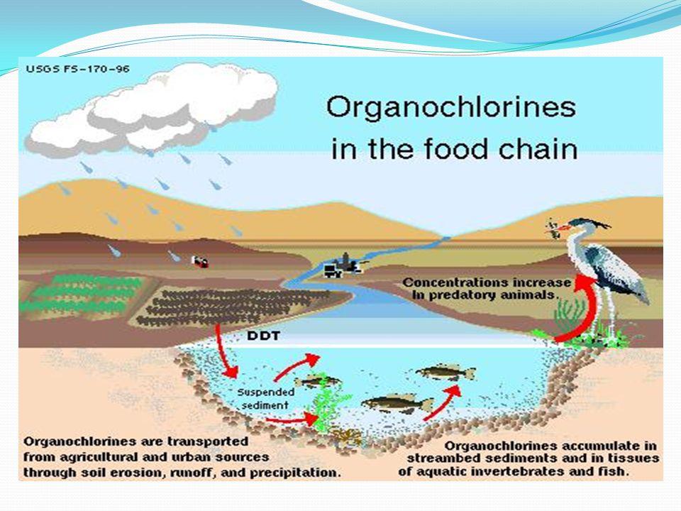 Çevre Üzerine Etkileri Tarımsal alanlara, orman veya bahçelere uygulanan pestisitler havaya, su ve toprağa, oradan da bu ortamlarda yaşayan diğer canl