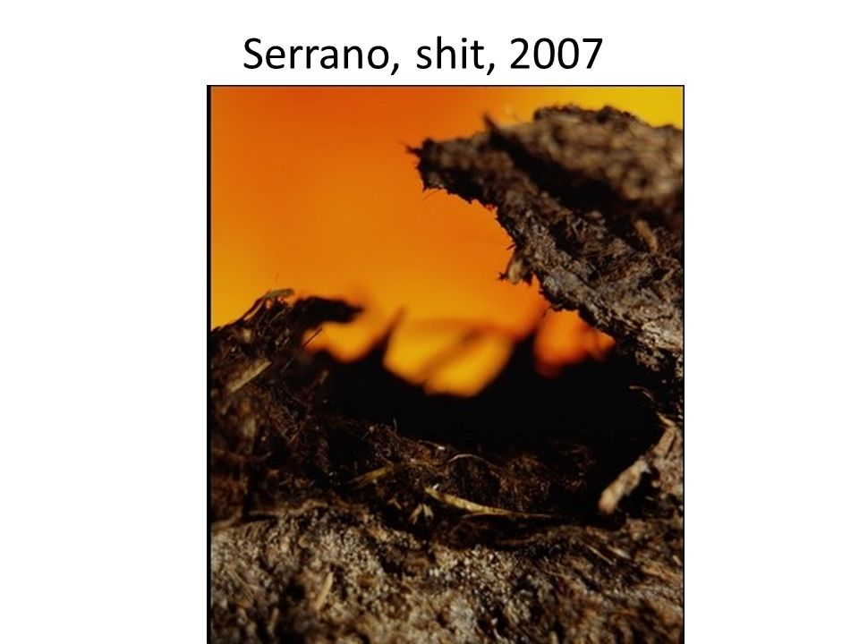 Serrano, shit, 2007