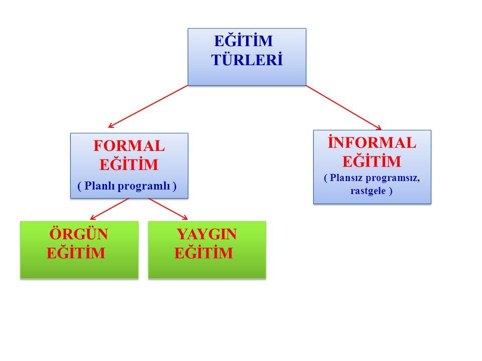 Soru Pedagojik Formasyon/ RİZE-2011