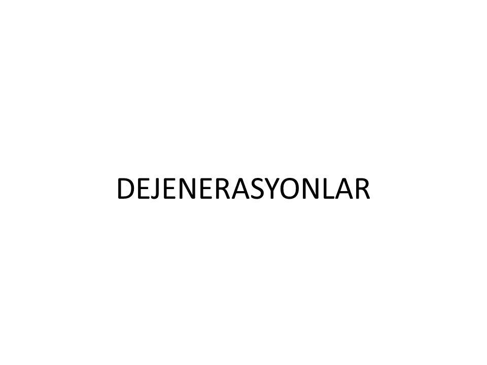 DEJENERASYONLAR