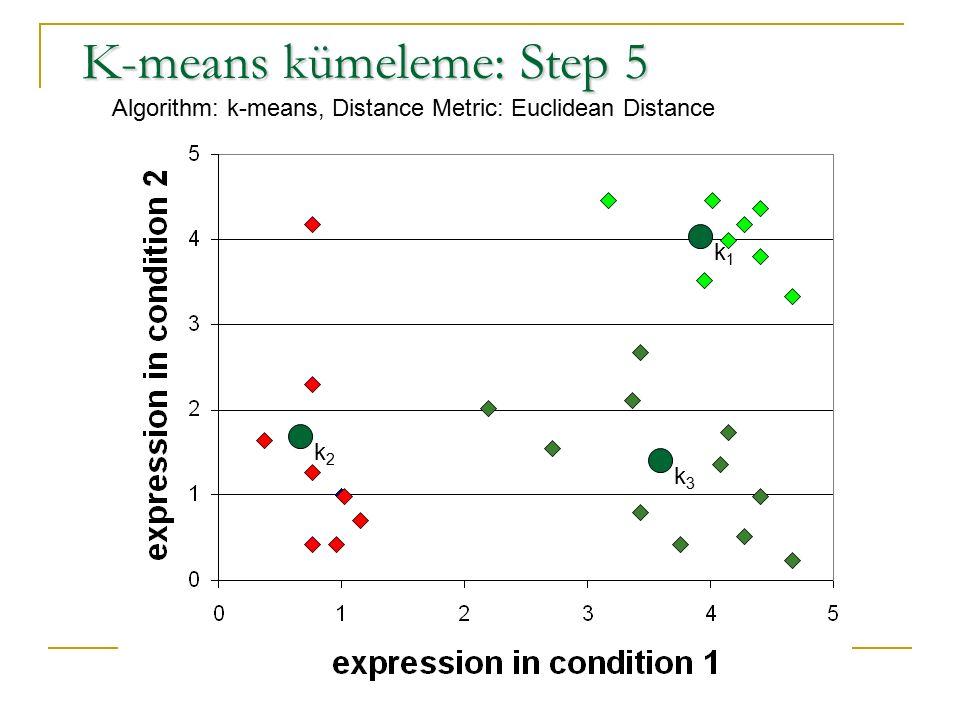 K-means kümeleme: Step 5 Algorithm: k-means, Distance Metric: Euclidean Distance k1k1 k2k2 k3k3