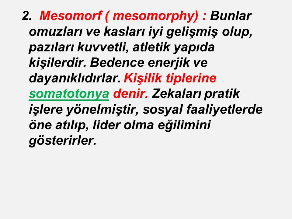 2. Mesomorf ( mesomorphy) : Bunlar omuzları ve kasları iyi gelişmiş olup, pazıları kuvvetli, atletik yapıda kişilerdir. Bedence enerjik ve dayanıklıdı