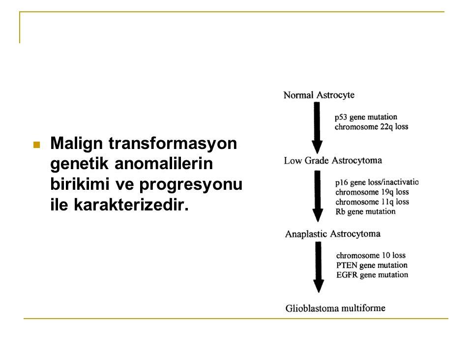 Malign transformasyon genetik anomalilerin birikimi ve progresyonu ile karakterizedir.