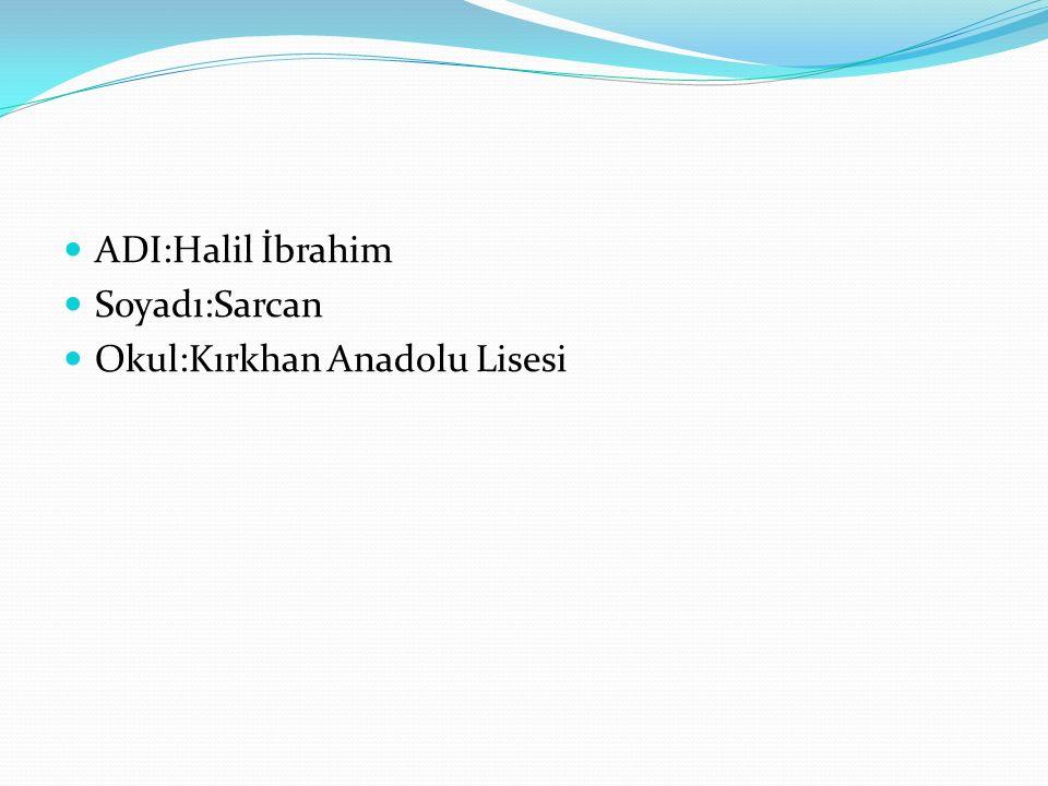 ADI:Halil İbrahim Soyadı:Sarcan Okul:Kırkhan Anadolu Lisesi
