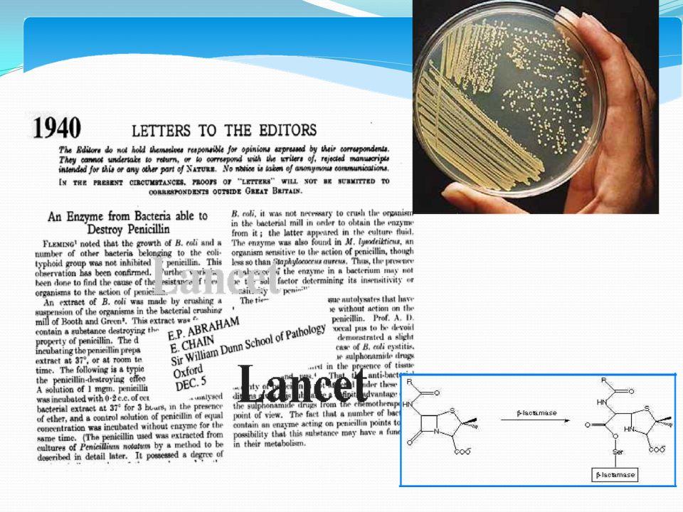 Pnömoni Tedavisi Rp/  Amoksisilin/klavulonik asit  Klaritromisin  Levofloksasin  Gemifloksasin  Moksifloksasin  Sefdinir