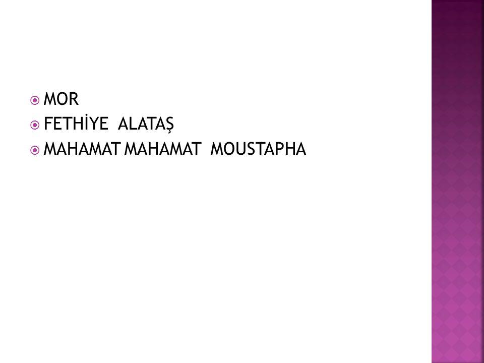  MOR  FETHİYE ALATAŞ  MAHAMAT MAHAMAT MOUSTAPHA
