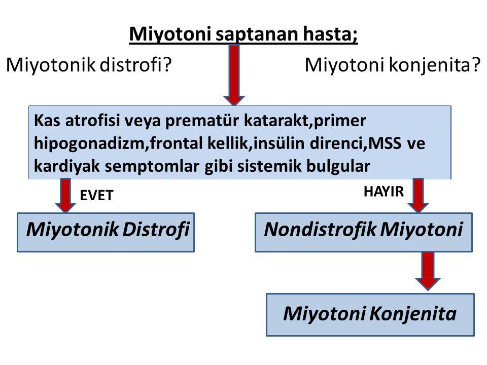 Miyotoni saptanan hasta; Miyotonik distrofi. Miyotoni konjenita.