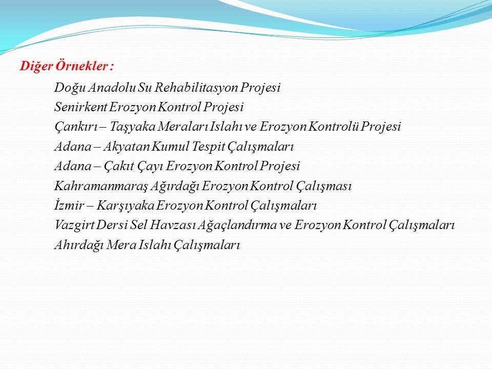 Diğer Örnekler : Doğu Anadolu Su Rehabilitasyon Projesi Senirkent Erozyon Kontrol Projesi Çankırı – Taşyaka Meraları Islahı ve Erozyon Kontrolü Projes