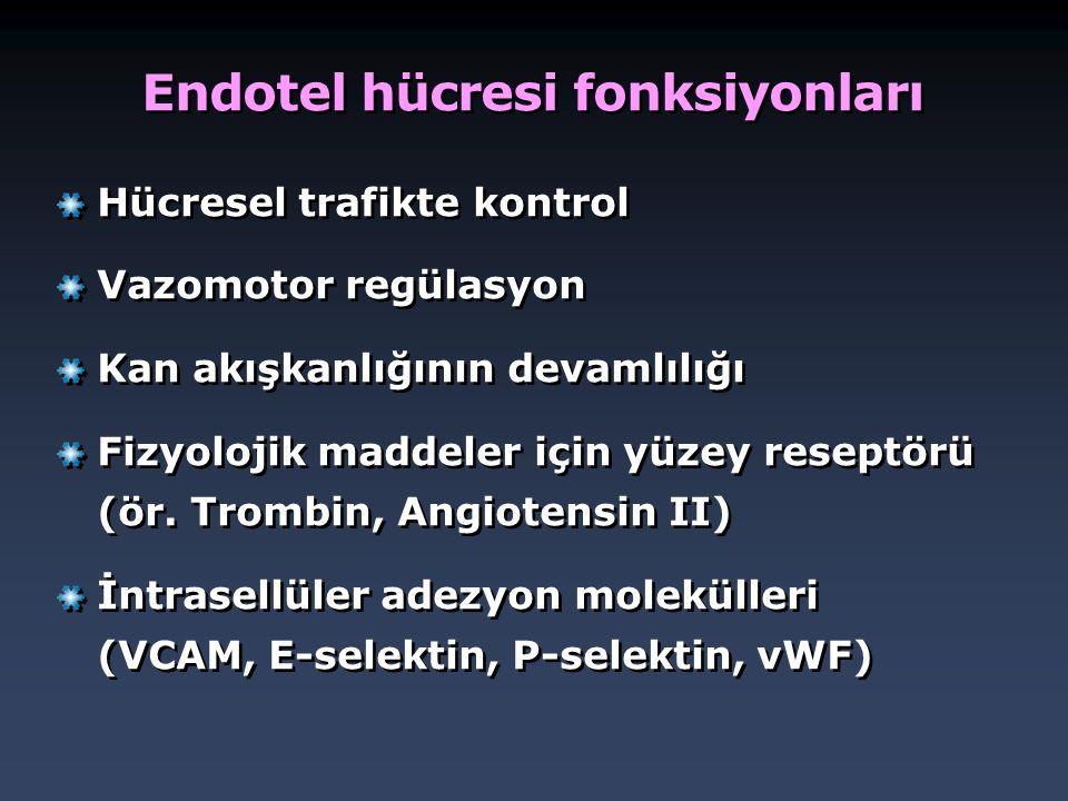 Endotel hücresi fonksiyonları Hücresel trafikte kontrol Vazomotor regülasyon Kan akışkanlığının devamlılığı Fizyolojik maddeler için yüzey reseptörü (