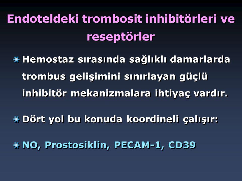 Endoteldeki trombosit inhibitörleri ve reseptörler Hemostaz sırasında sağlıklı damarlarda trombus gelişimini sınırlayan güçlü inhibitör mekanizmalara