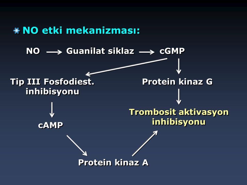 NO etki mekanizması: NO Guanilat siklaz cGMP  Protein kinaz G  Trombosit aktivasyon inhibisyonu Protein kinaz A  Tip III Fosfodiest. inhibisyonu cA