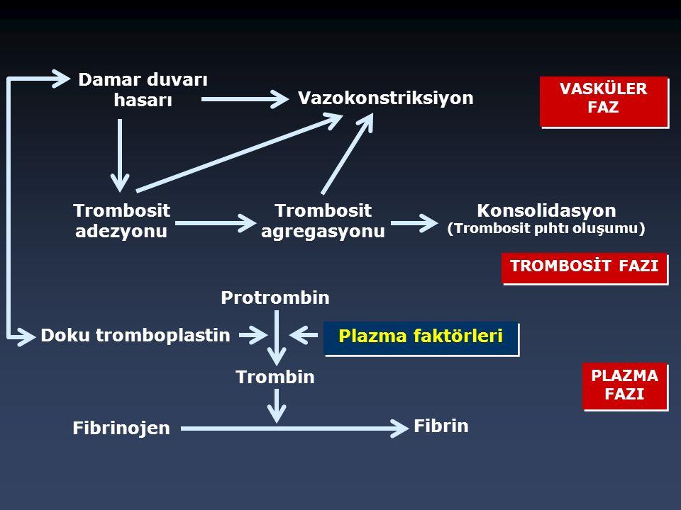 Damar duvarı hasarı Vazokonstriksiyon Trombosit adezyonu Trombosit agregasyonu Konsolidasyon (Trombosit pıhtı oluşumu) Protrombin Trombin Fibrin Doku