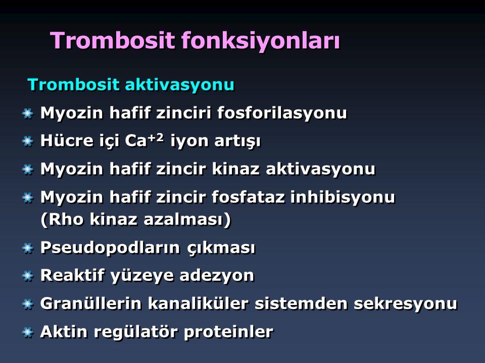 Trombosit fonksiyonları Trombosit aktivasyonu Myozin hafif zinciri fosforilasyonu Hücre içi Ca +2 iyon artışı Myozin hafif zincir kinaz aktivasyonu My