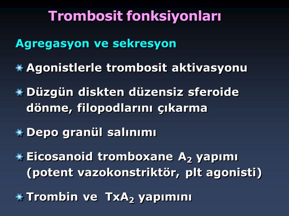 Trombosit fonksiyonları Agregasyon ve sekresyon Agonistlerle trombosit aktivasyonu Düzgün diskten düzensiz sferoide dönme, filopodlarını çıkarma Depo