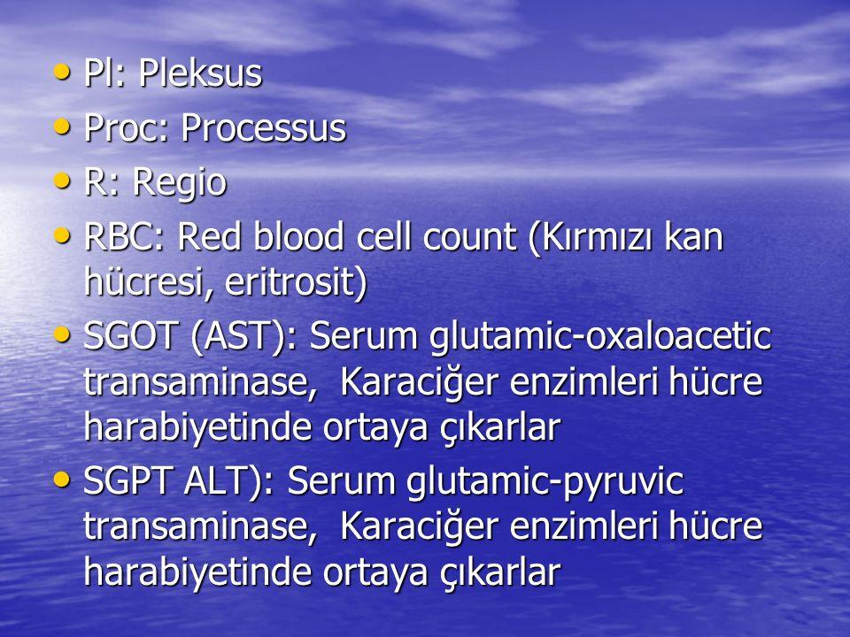Pl: Pleksus Pl: Pleksus Proc: Processus Proc: Processus R: Regio R: Regio RBC: Red blood cell count (Kırmızı kan hücresi, eritrosit) RBC: Red blood ce