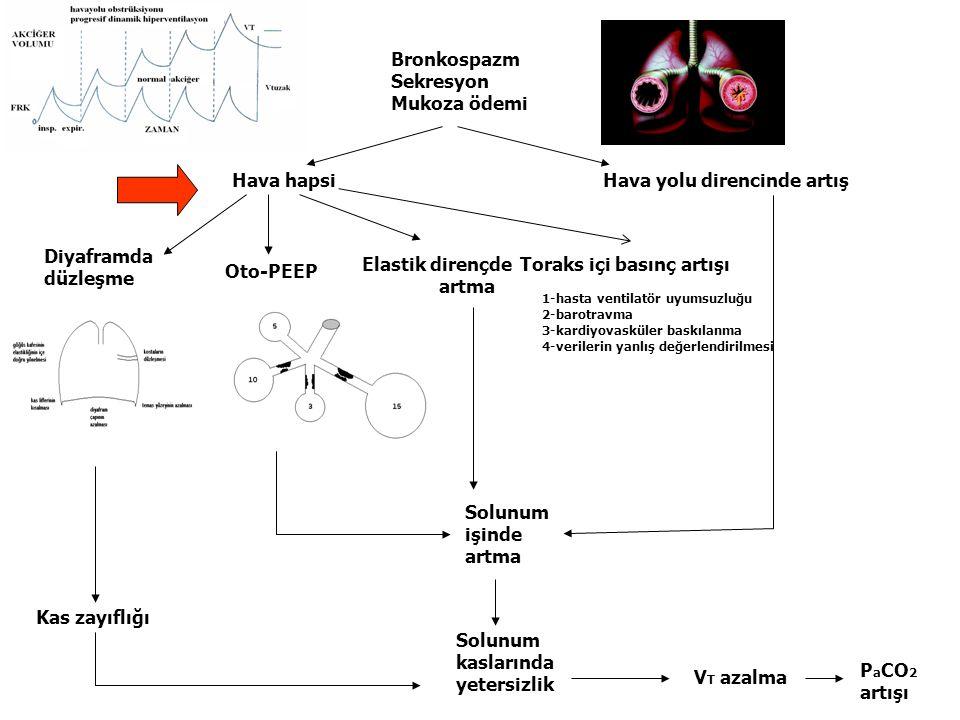 Bronkospazm Sekresyon Mukoza ödemi Hava hapsiHava yolu direncinde artış Diyaframda düzleşme Oto-PEEP Elastik dirençde artma Kas zayıflığı Solunum kasl
