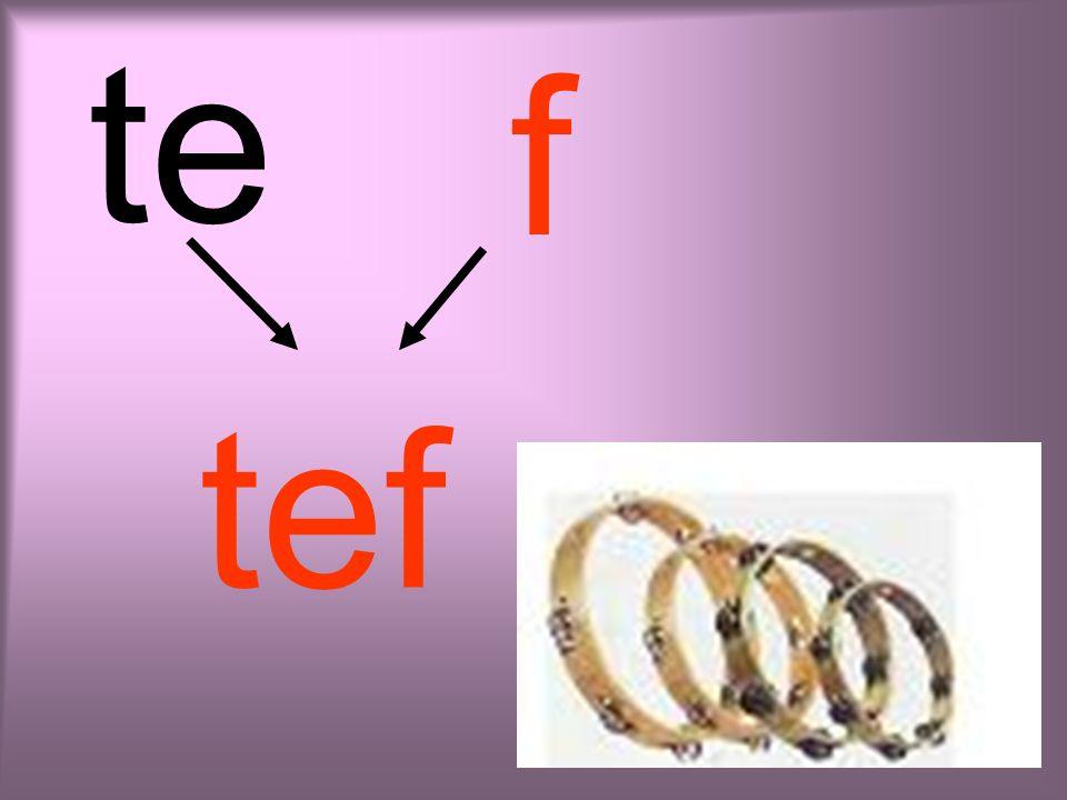 li f lif