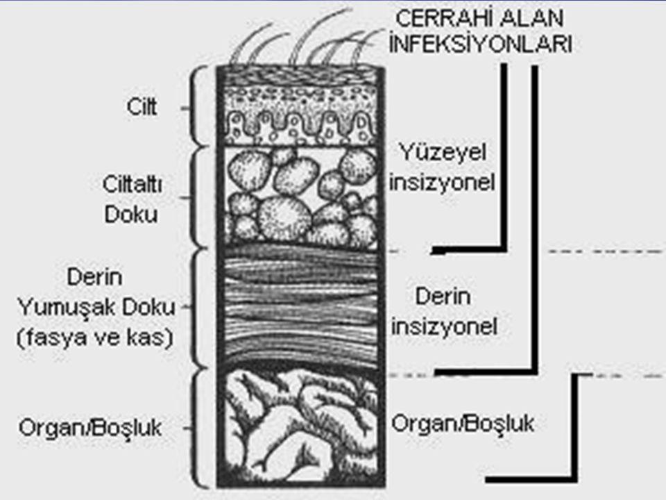 eylül-200727