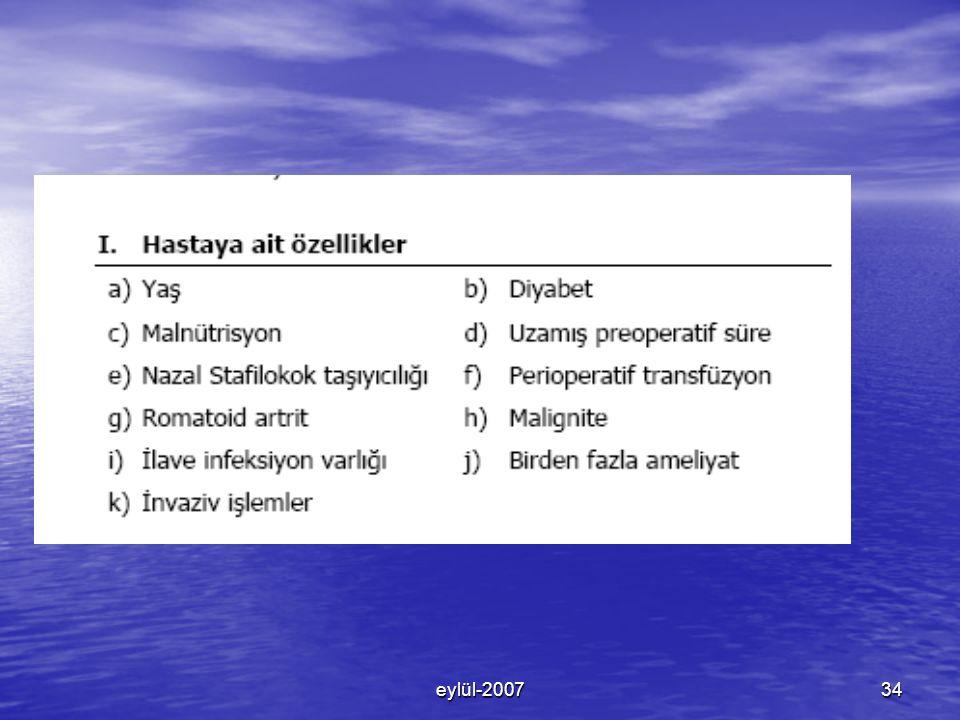eylül-200734