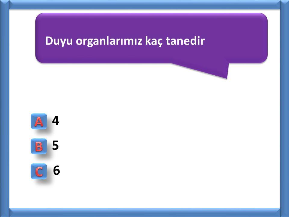 Duyu organlarımız kaç tanedir 4 5 6