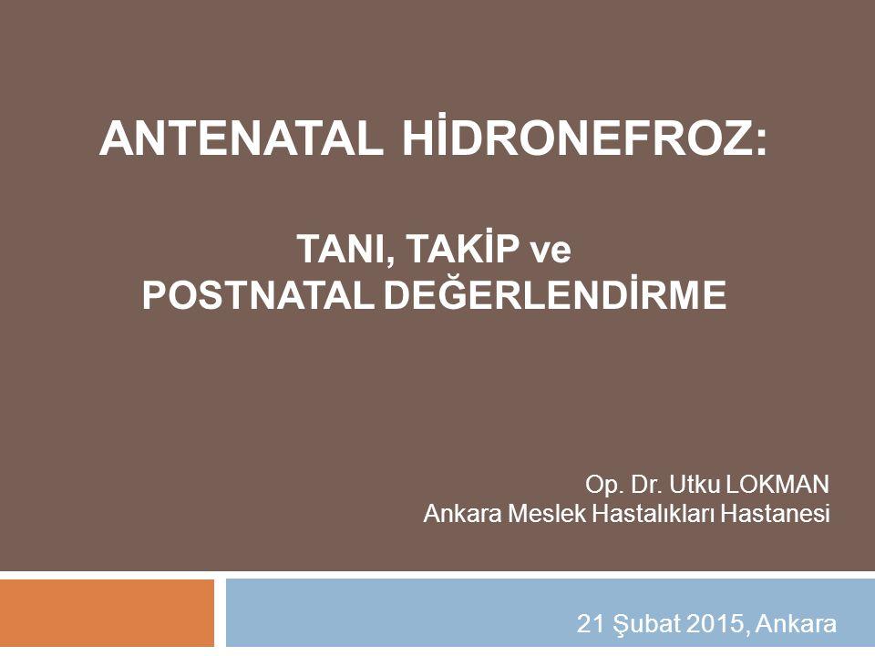21 Şubat 2015, Ankara ANTENATAL HİDRONEFROZ: TANI, TAKİP ve POSTNATAL DEĞERLENDİRME Op. Dr. Utku LOKMAN Ankara Meslek Hastalıkları Hastanesi