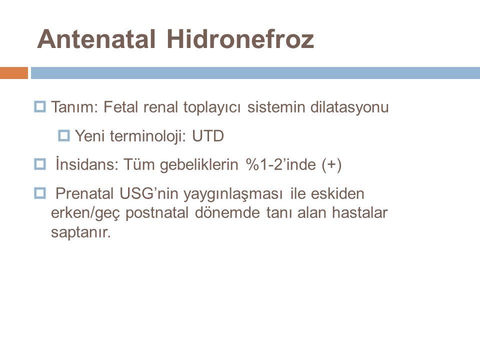  Tanım: Fetal renal toplayıcı sistemin dilatasyonu  Yeni terminoloji: UTD  İnsidans: Tüm gebeliklerin %1-2'inde (+)  Prenatal USG'nin yaygınlaşmas