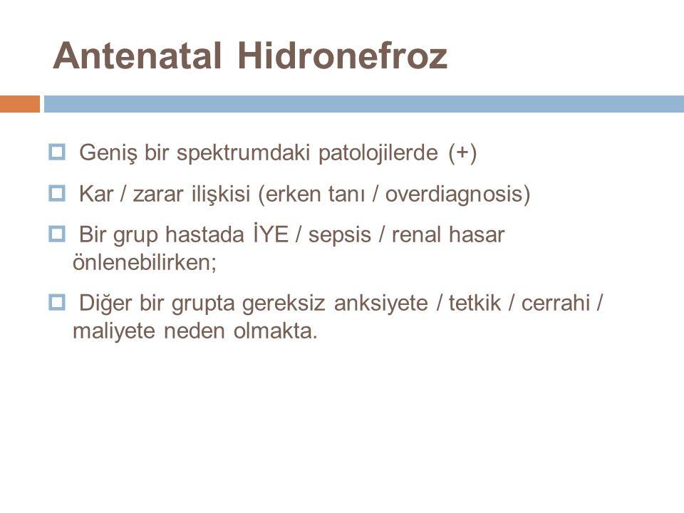  Geniş bir spektrumdaki patolojilerde (+)  Kar / zarar ilişkisi (erken tanı / overdiagnosis)  Bir grup hastada İYE / sepsis / renal hasar önlenebil