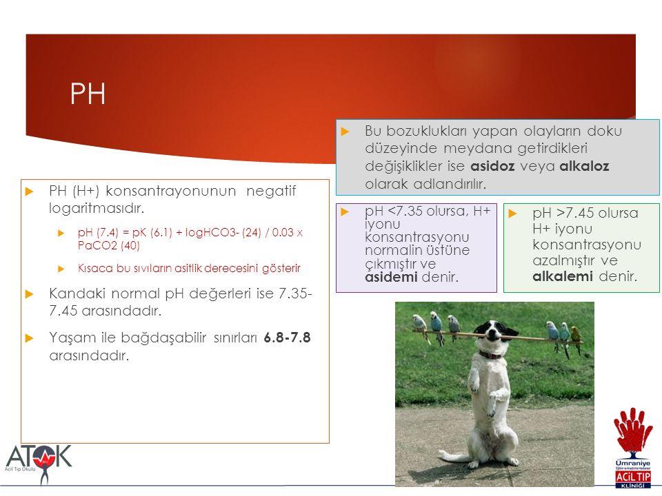 PH  PH (H+) konsantrayonunun negatif logaritmasıdır.  pH (7.4) = pK (6.1) + logHCO3- (24) / 0.03 x PaCO2 (40)  Kısaca bu sıvıların asitlik derecesi