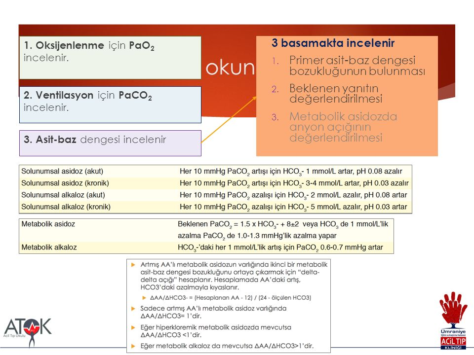 AKG sistematik okunması 2. Ventilasyon için PaCO 2 incelenir.