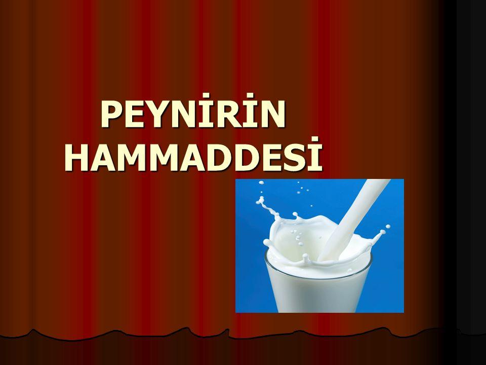 PEYNİRİN HAMMADDESİ