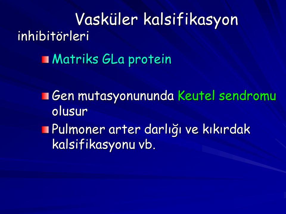 Vasküler kalsifikasyon inhibitörleri Matriks GLa protein Gen mutasyonununda Keutel sendromu olusur Pulmoner arter darlığı ve kıkırdak kalsifikasyonu vb.