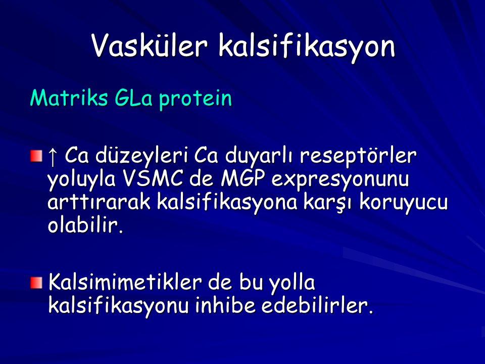 Vasküler kalsifikasyon Matriks GLa protein ↑ Ca düzeyleri Ca duyarlı reseptörler yoluyla VSMC de MGP expresyonunu arttırarak kalsifikasyona karşı koruyucu olabilir.