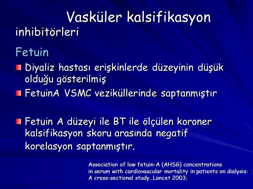 Vasküler kalsifikasyon inhibitörleri Fetuin Diyaliz hastası erişkinlerde düzeyinin düşük olduğu gösterilmiş FetuinA VSMC veziküllerinde saptanmıştır F