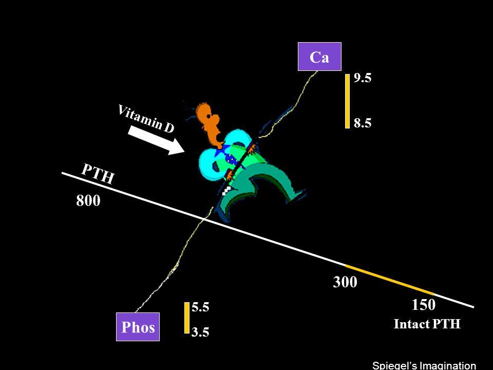 Phos Ca PTH 300 150 800 9.5 8.5 5.5 3.5 Vitamin D Intact PTH Spiegel's Imagination