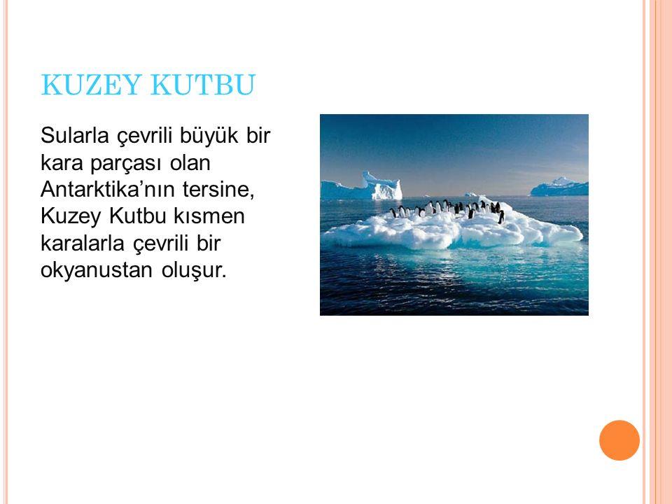 KUZEY KUTBU Sularla çevrili büyük bir kara parçası olan Antarktika'nın tersine, Kuzey Kutbu kısmen karalarla çevrili bir okyanustan oluşur.