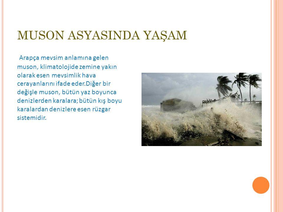 MUSON ASYASINDA YAŞAM Arapça mevsim anlamına gelen muson, klimatolojide zemine yakın olarak esen mevsimlik hava cerayanlarını ifade eder.Diğer bir değişle muson, bütün yaz boyunca denizlerden karalara; bütün kış boyu karalardan denizlere esen rüzgar sistemidir.