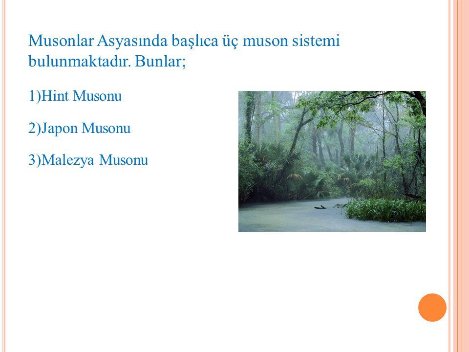 Musonlar Asyasında başlıca üç muson sistemi bulunmaktadır.