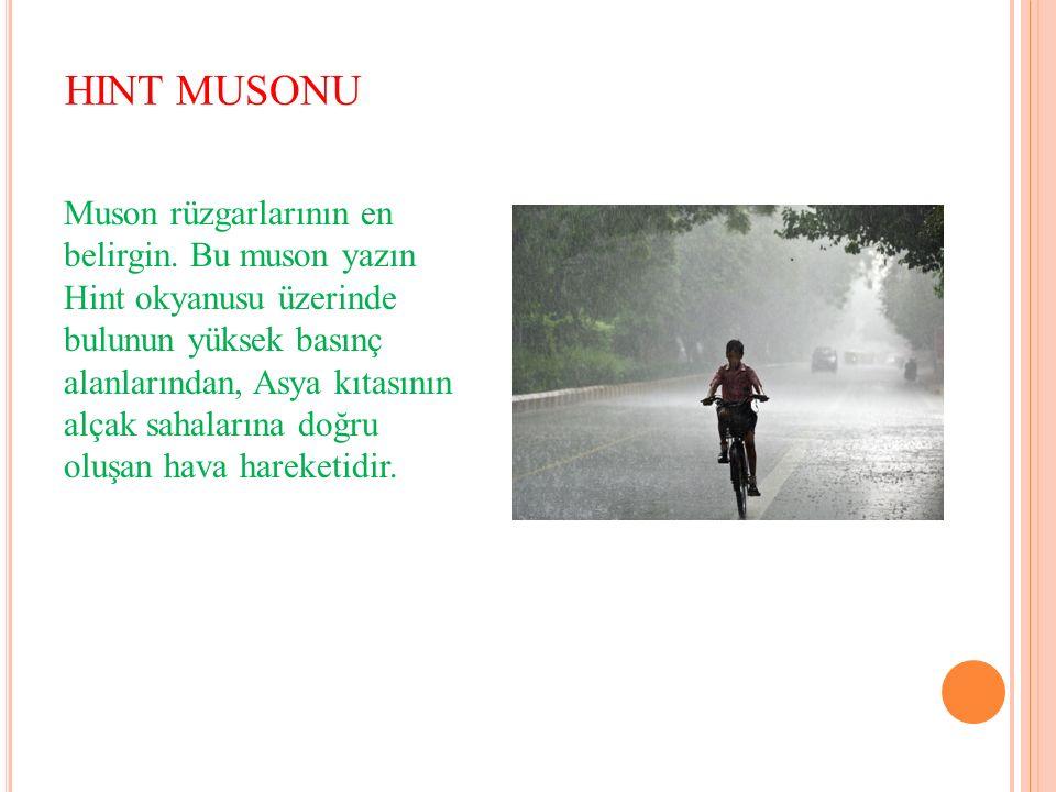 HINT MUSONU Muson rüzgarlarının en belirgin.