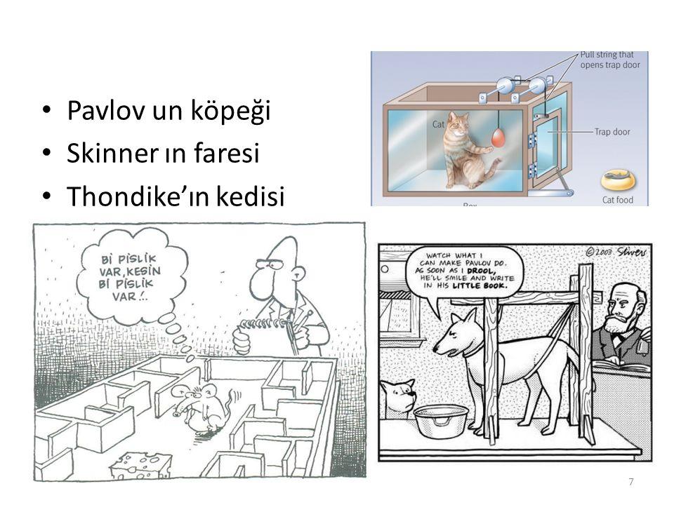 Pavlov un köpeği Skinner ın faresi Thondike'ın kedisi 7
