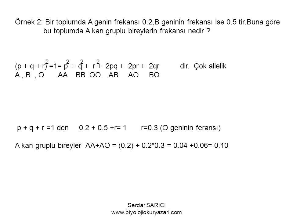 Örnek 2: Bir toplumda A genin frekansı 0.2,B geninin frekansı ise 0.5 tir.Buna göre bu toplumda A kan gruplu bireylerin frekansı nedir .
